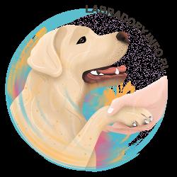 Wsparcie dla Labradory.info.pl